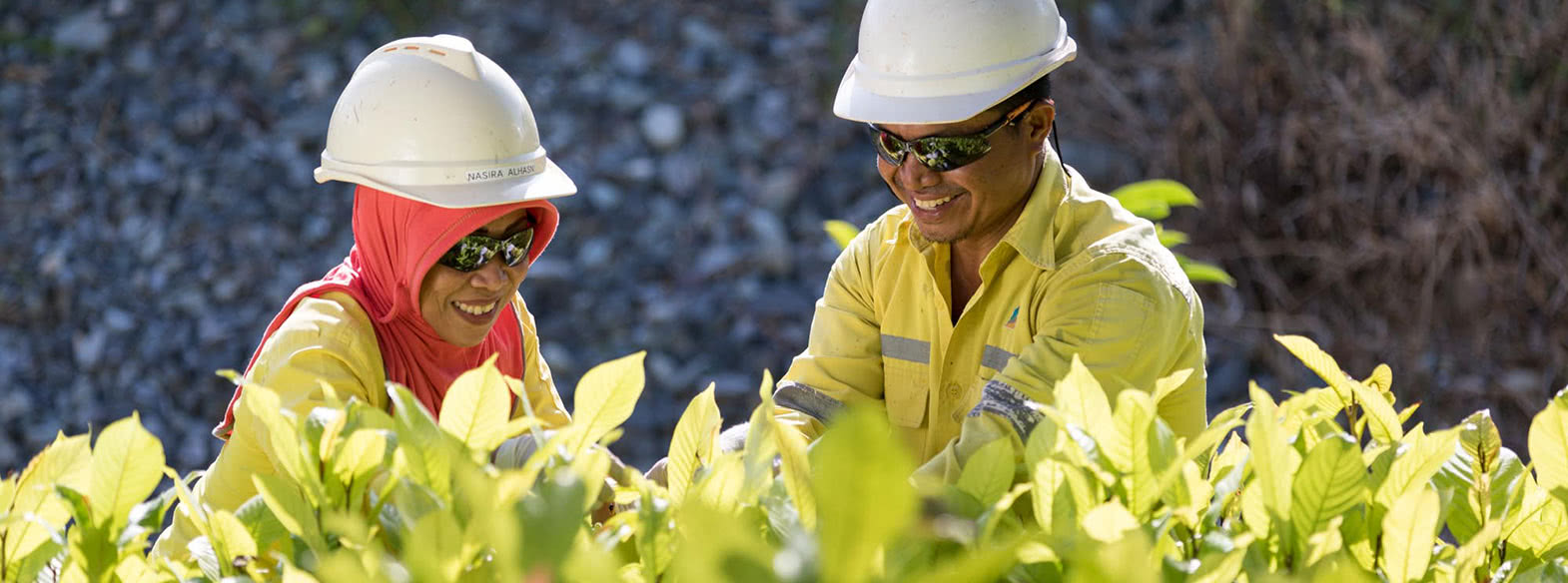 Plant Nurseries at the Impacted Former Mining Areas as Part of Archi's Reclamation Program